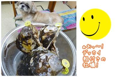 110706_tq_bachan_05.jpg