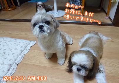 110718_nadeshiko_01.jpg