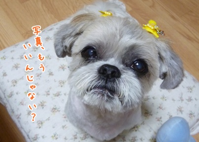 111010_taku_trim_04.jpg