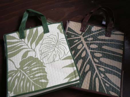 20090903hawaiianecobag3.jpg