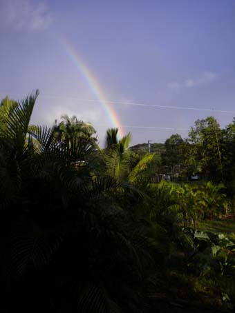 20090916rainbow1.jpg