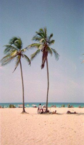 ハバナ近郊の海水浴場