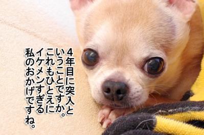 IMGP0591-4.jpg