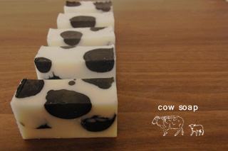 cowsoap
