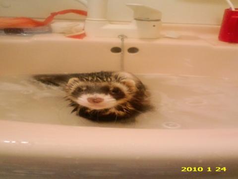 ロッキー風呂