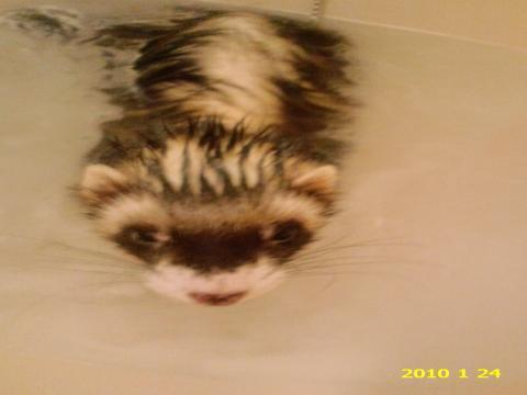ロッキー風呂1