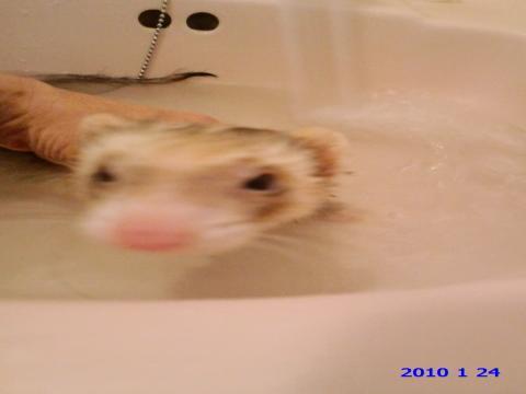 ネギ 風呂1