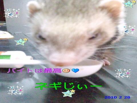 PAP_0001_convert_20100228092901.jpg