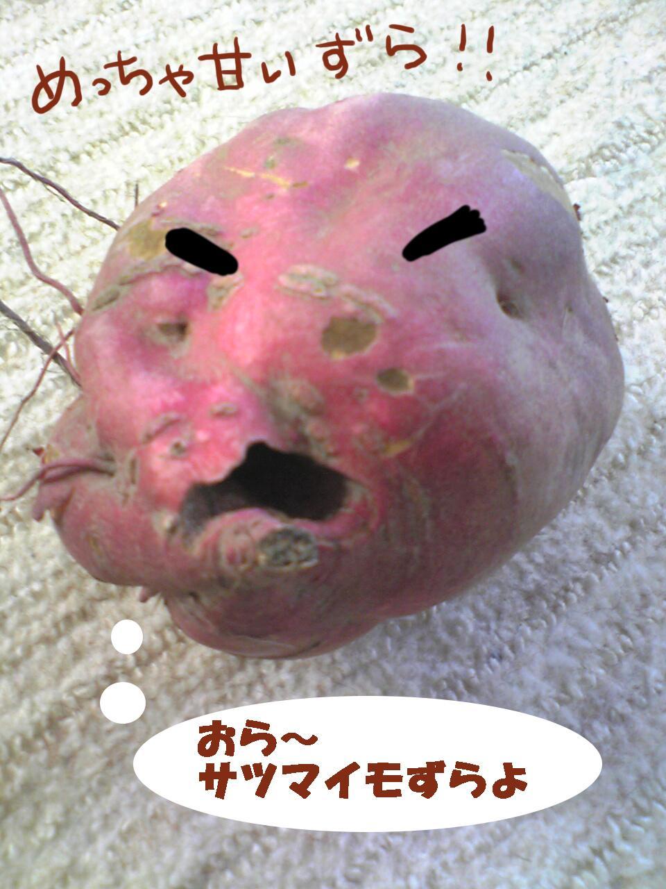 サツマイモ1
