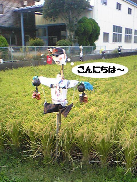 kakashi3.jpg
