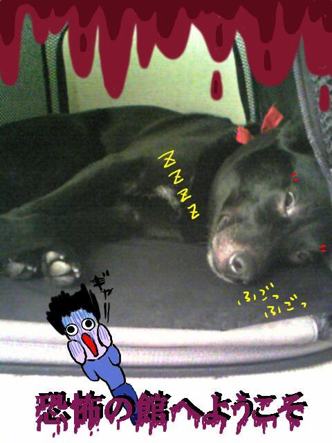 kyoufu2.jpg