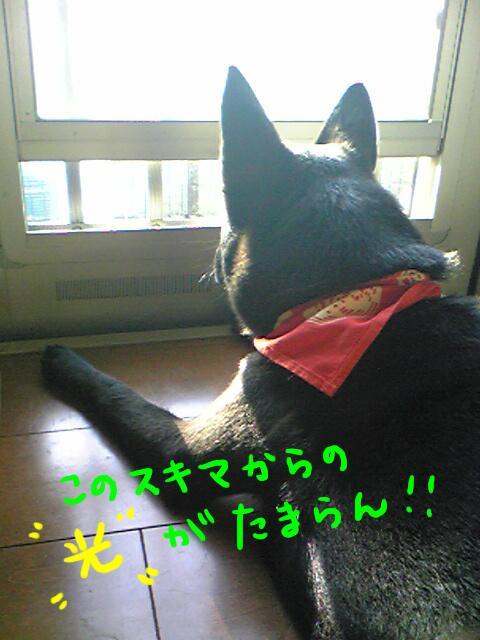 nozoki2.jpg