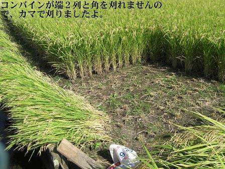 農業1-21