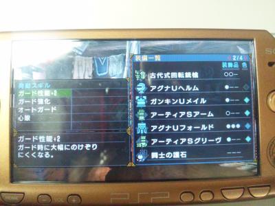 SH3I0094_convert_20110414175541.jpg