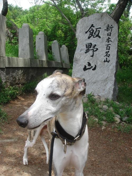 讃岐富士登山 08