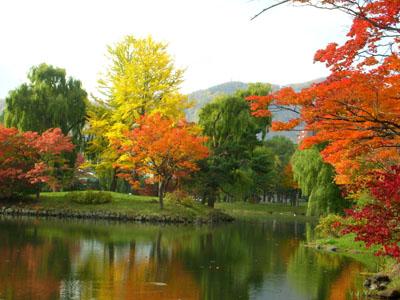 中島公園の紅葉1