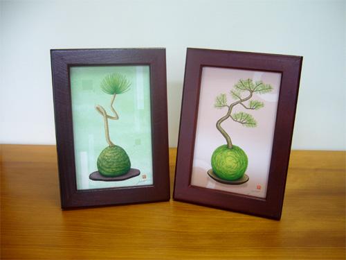 インテリア、ギフト こけ玉のミニ盆栽