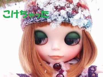 015_20091126132550.jpg
