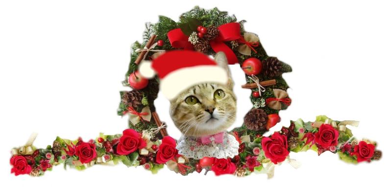 さくら クリスマス-1-1