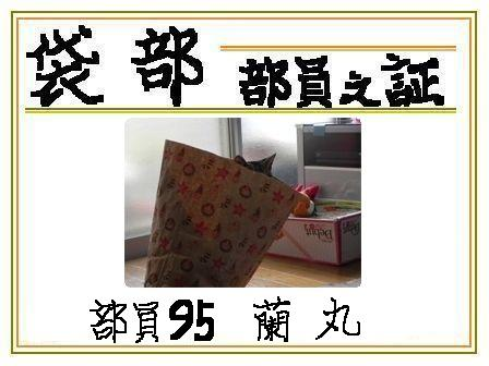 20101203134333fa9.jpg