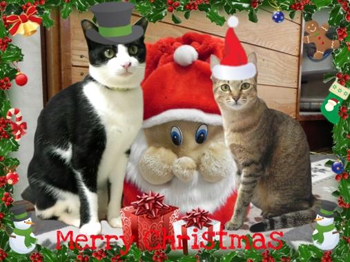クリスマス-2-2
