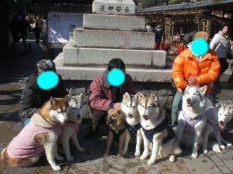 2010_0220画像0021