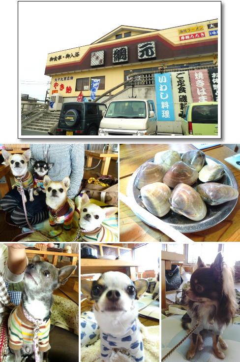 image_20111008052949.jpg