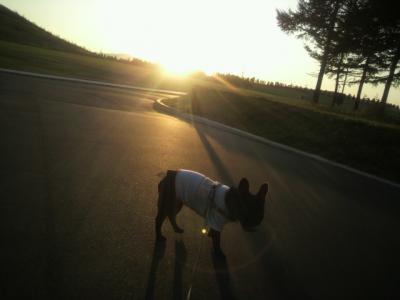夕日がきれいだねぇ。