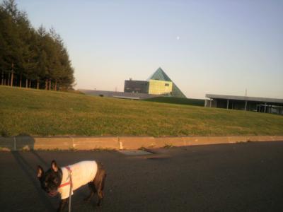 月とガラスのピラミッドとマツリ