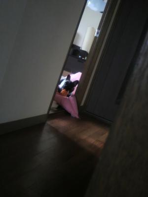 寝室からマツリ、キッチンからママが、お互いをチェック!