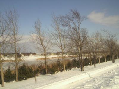 川?モエレだから沼?表面は雪で覆われてる