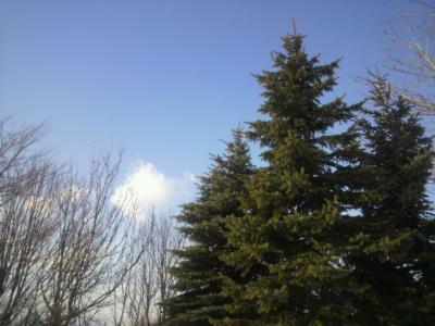 雲があるのが好き