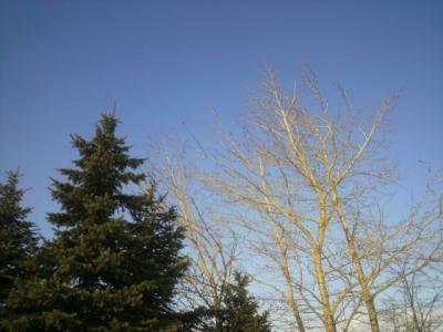 青空もキレイ