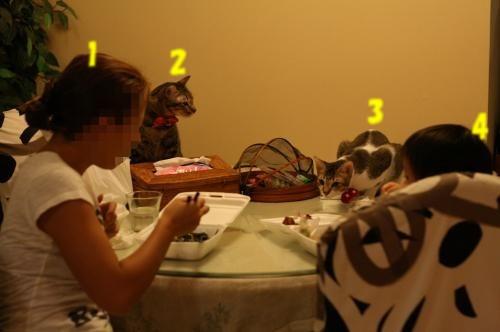 我が家の食卓