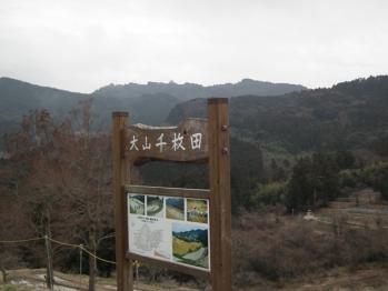 22 senmaida atagoyama