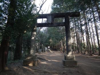 02 torii1