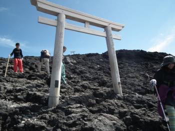 20 sancho torii