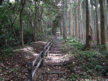 07 dainichiyama tozando3