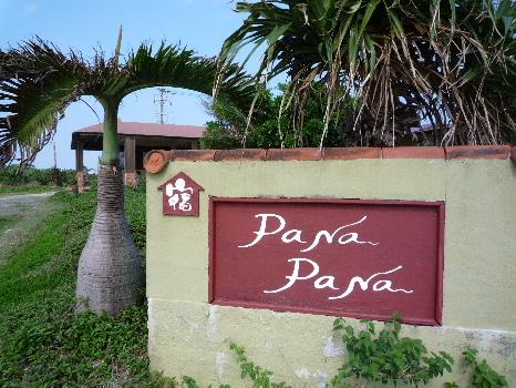 パナパナ1