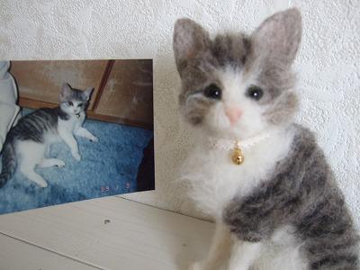 20101215羊毛猫ちゃん03