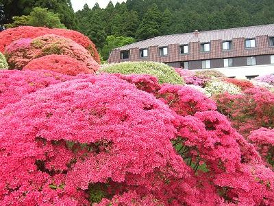 s-20110526山のホテル 023
