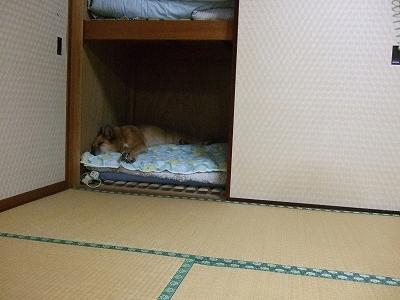 s-20110810花火大会 005