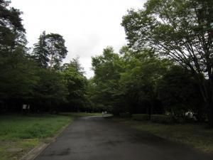 1.日高運動公園