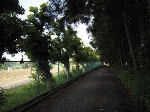 1.朝の散歩道