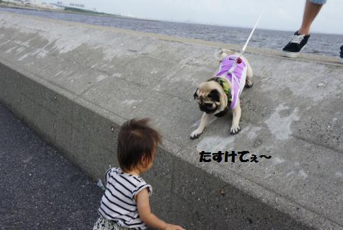 じんたお散歩6