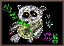 panda-03.jpg