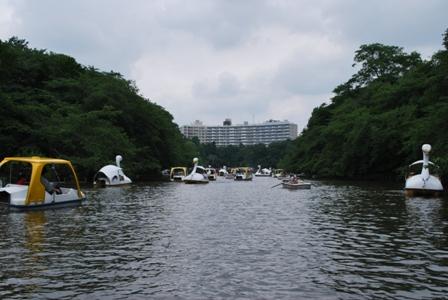 20110619_018.jpg
