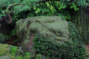 山野草エンドレスガーデン
