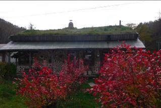色づくベリーの葉