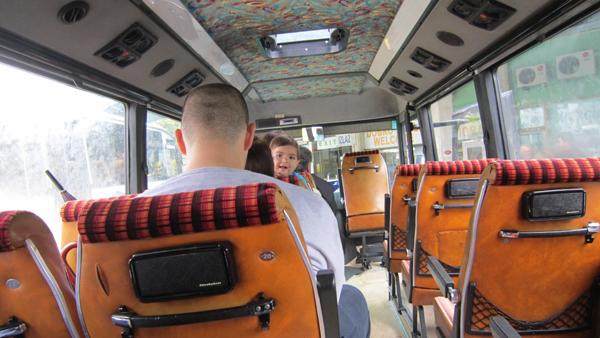 s10-minibus-2446.jpg